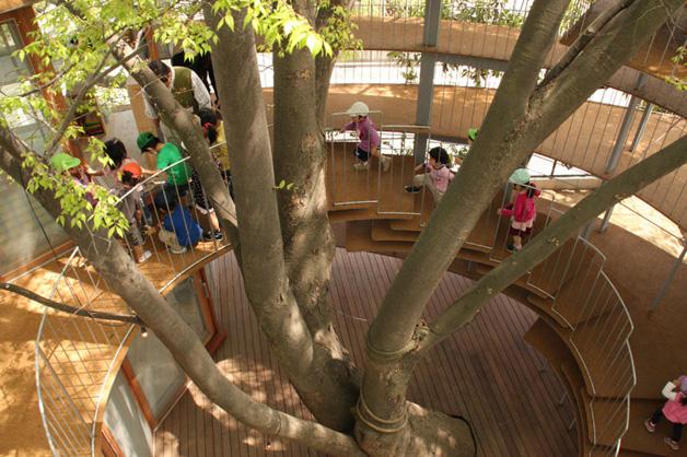 fuji-yochien escolas incríveis árvore