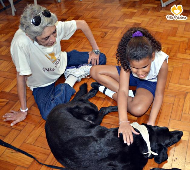 animais ajudam pessoas doentes a recuperar - terapia com animais