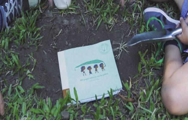 livro infantil sementes