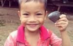 peixe de ferro anemia cambodja