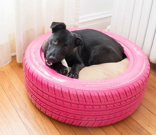 cama cão reutilizar pneus de borracha