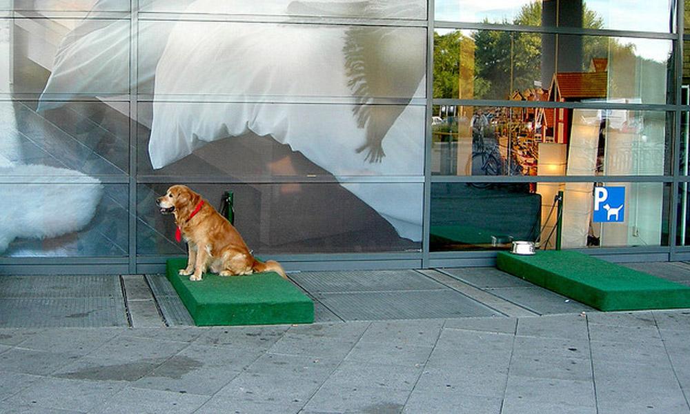 cão ikea estacionamento para cães