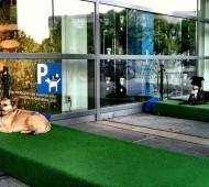 ikea cães parque de estacionamento