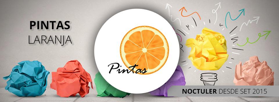 PINTAS LARANJA NOCTULER NOCTULA Channel