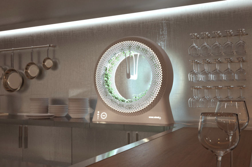 GREEN WHEEL horta interior cozinha