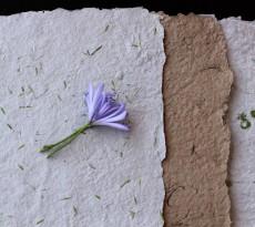 fazer papel reciclado flores