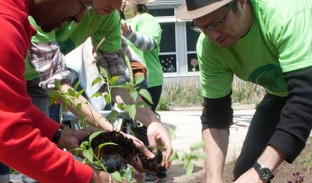 Recyclebank reciclagem plantar árvores