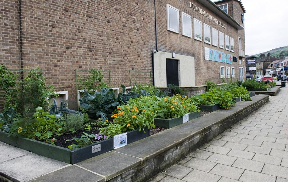 Hortas comunitárias urbanas