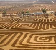 controlar erosão do solo