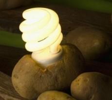 Bateria de batata lâmpada