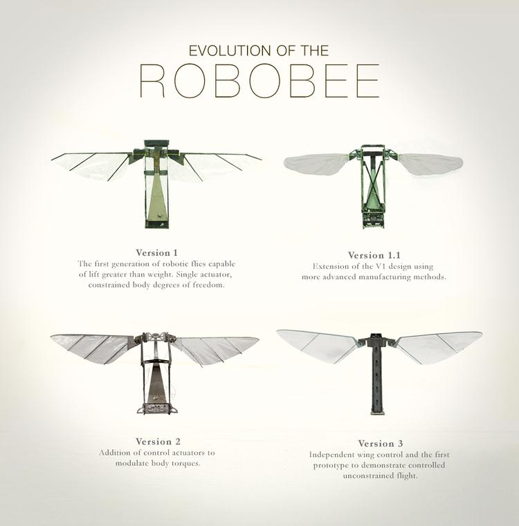bee robô
