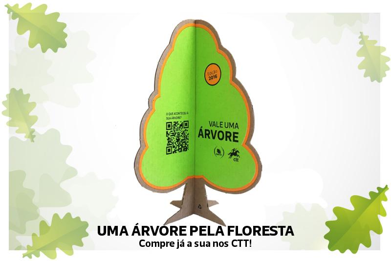 Campanha - uma árvore pela floresta