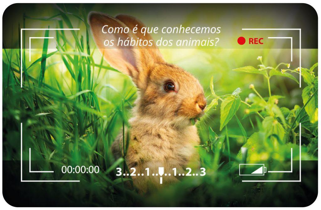 Como é que conhecemos os hábitos dos animais