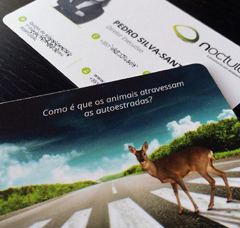 Contactos-Pedro-Silva-Santos-NOCTULA-Ambiente-cartão