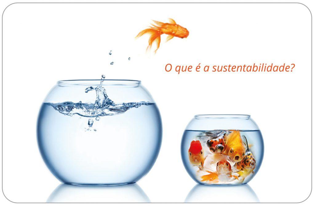 O que é a sustentabilidade